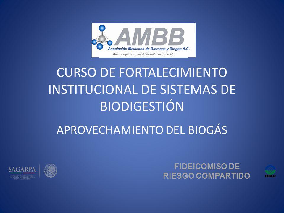 CURSO DE FORTALECIMIENTO INSTITUCIONAL DE SISTEMAS DE BIODIGESTIÓN