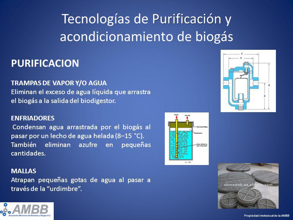 Tecnologías de Purificación y acondicionamiento de biogás
