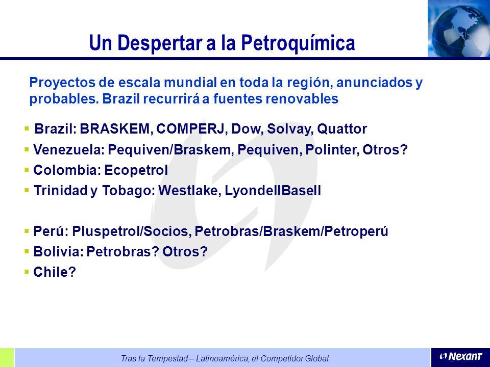 Un Despertar a la Petroquímica