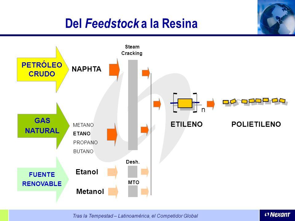 Del Feedstock a la Resina
