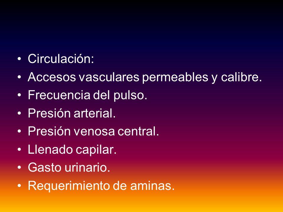 Circulación: Accesos vasculares permeables y calibre. Frecuencia del pulso. Presión arterial. Presión venosa central.