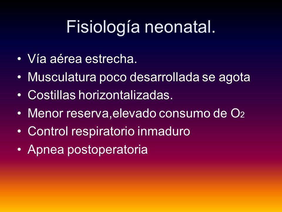 Fisiología neonatal. Vía aérea estrecha.