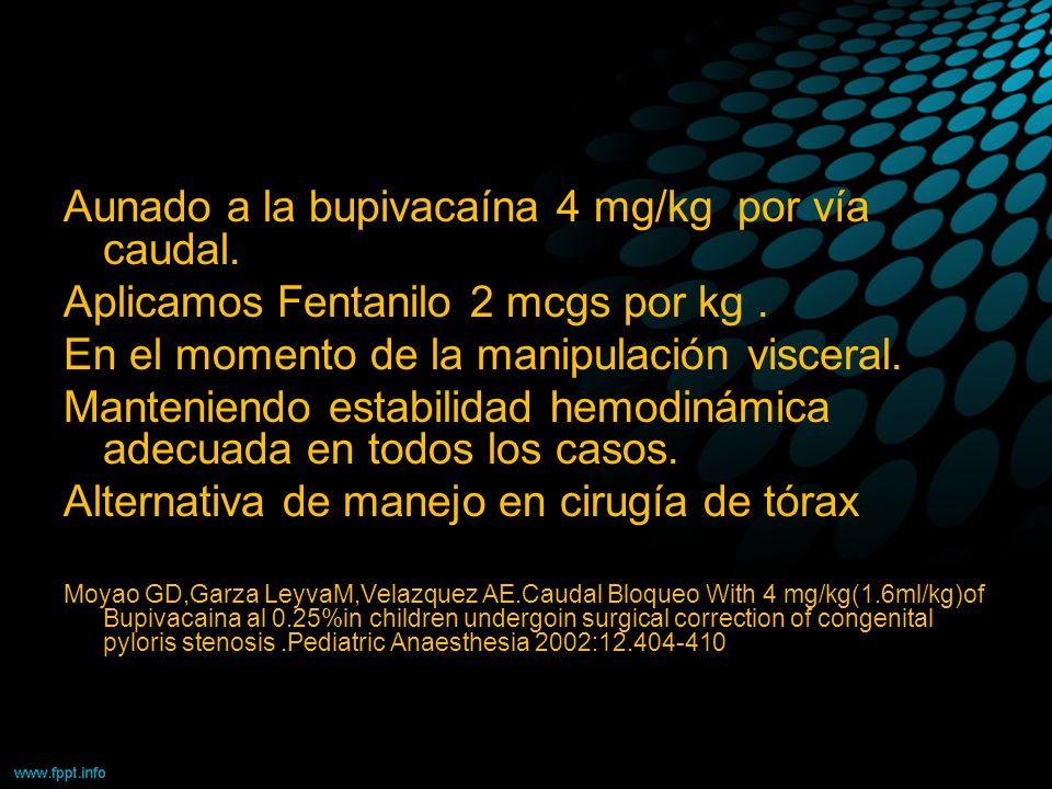 Aunado a la bupivacaína 4 mg/kg por vía caudal.