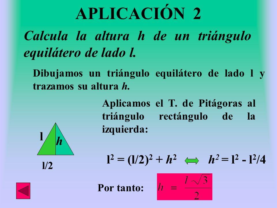APLICACIÓN 2 Calcula la altura h de un triángulo equilátero de lado l.