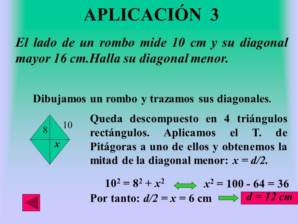 APLICACIÓN 3 El lado de un rombo mide 10 cm y su diagonal mayor 16 cm.Halla su diagonal menor. Dibujamos un rombo y trazamos sus diagonales.