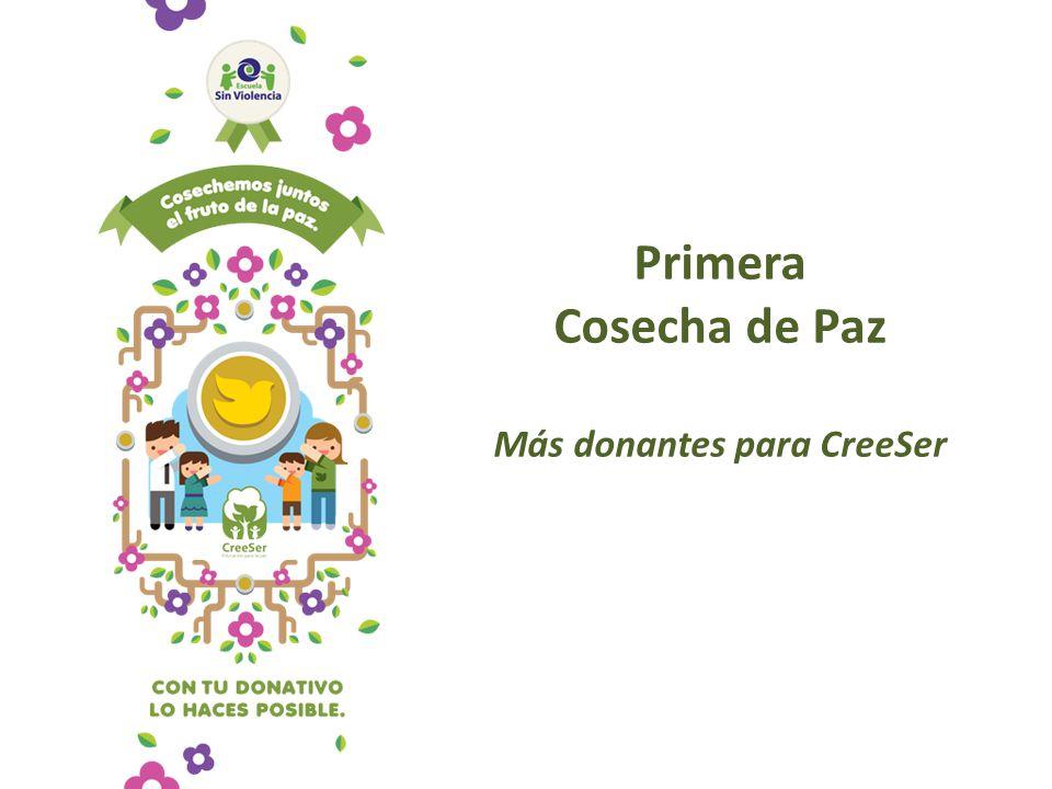 Primera Cosecha de Paz Más donantes para CreeSer