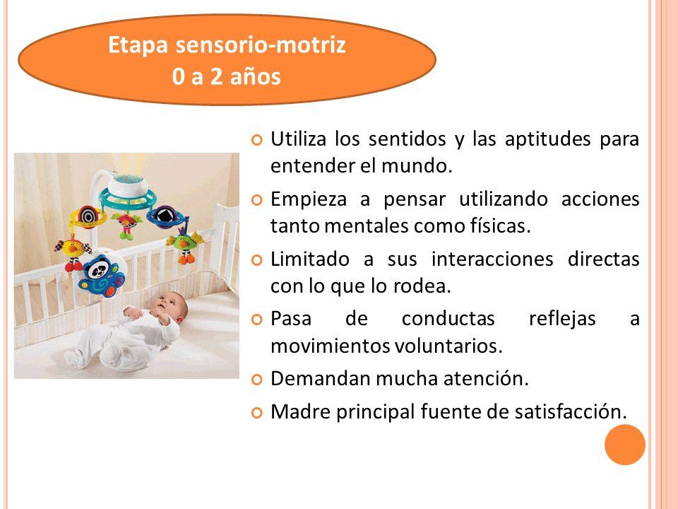 Etapa sensorio-motriz 0 a 2 años