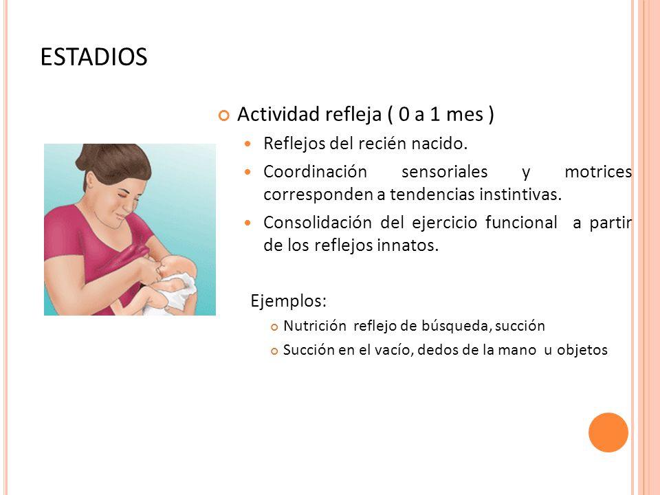 ESTADIOS Actividad refleja ( 0 a 1 mes ) Reflejos del recién nacido.