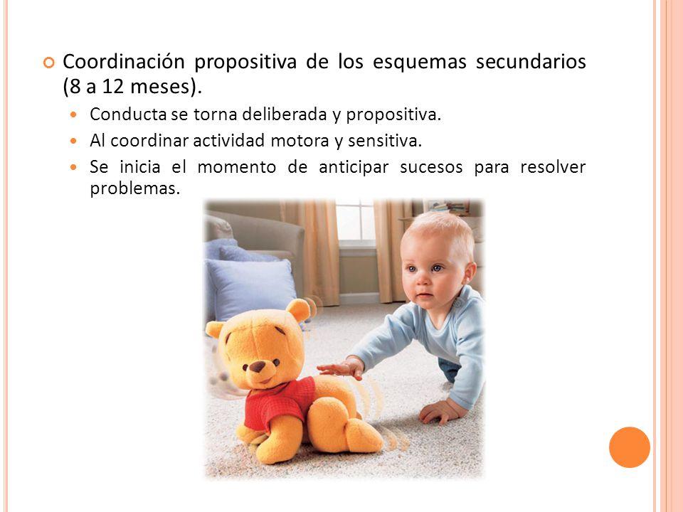 Coordinación propositiva de los esquemas secundarios (8 a 12 meses).