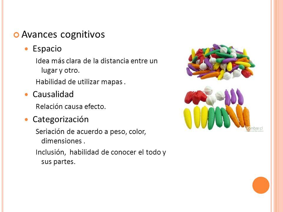 Avances cognitivos Espacio Causalidad Categorización