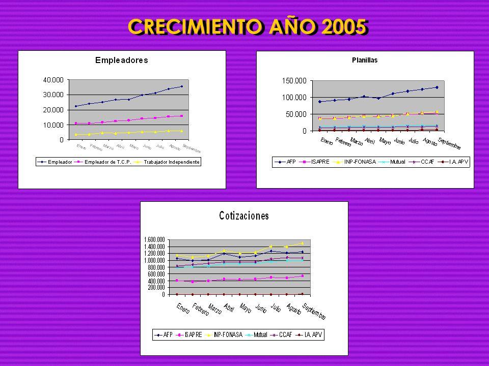 CRECIMIENTO AÑO 2005