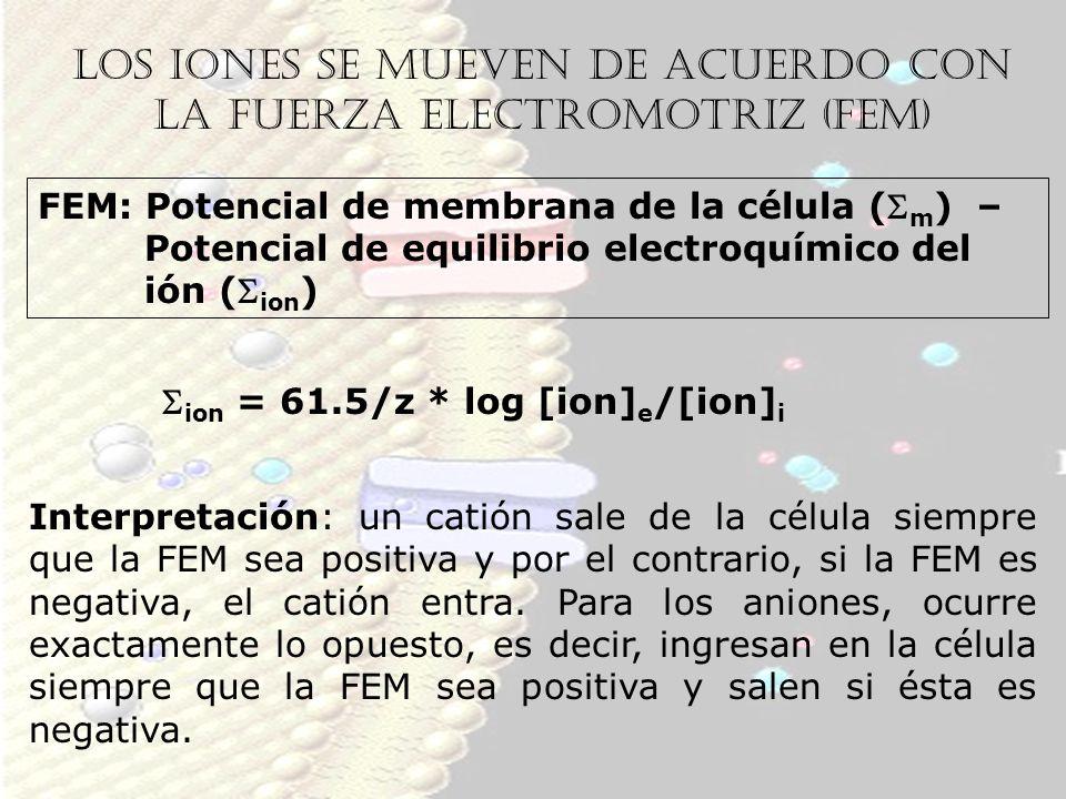 Los iones se mueven de acuerdo con la fuerza electromotriz (FEM)