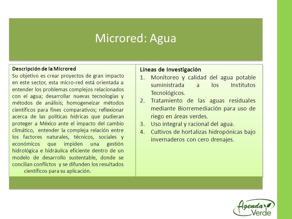Microred: Agua Líneas de Investigación