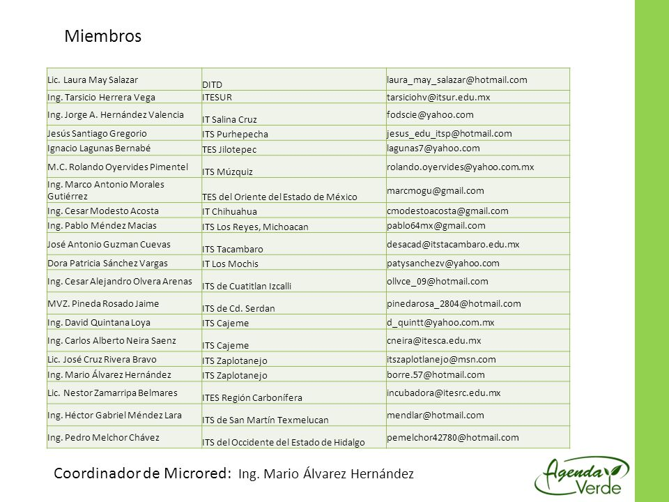 Miembros Coordinador de Microred: Ing. Mario Álvarez Hernández