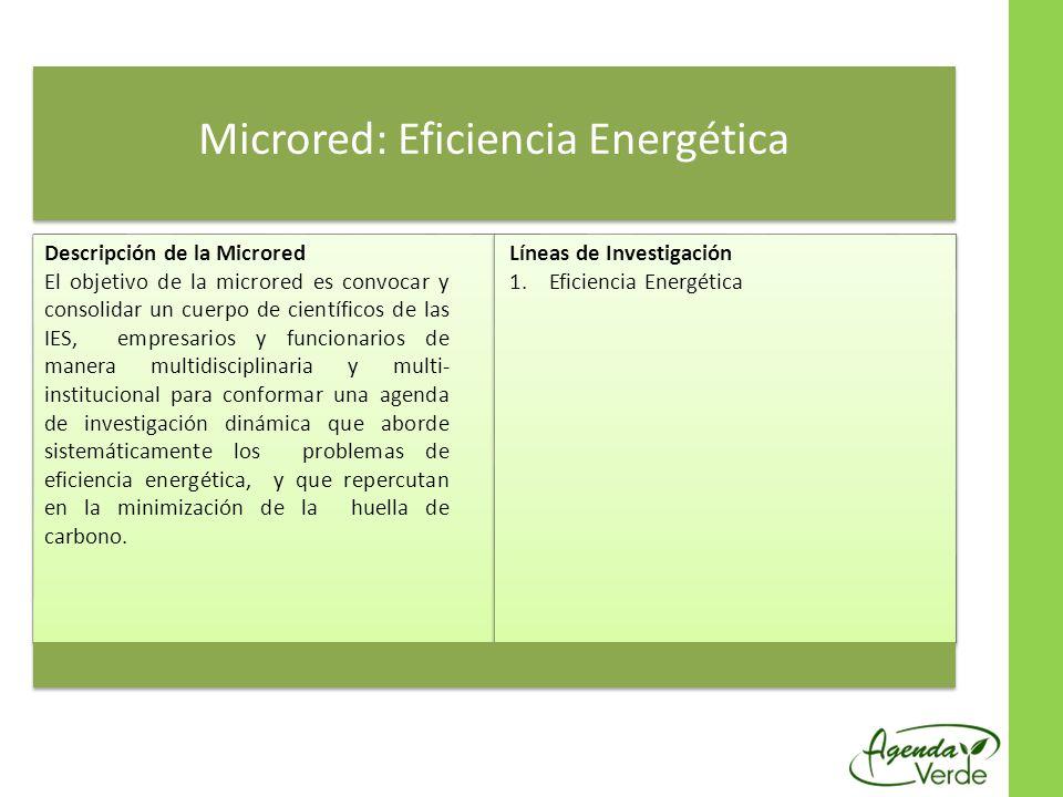 Microred: Eficiencia Energética