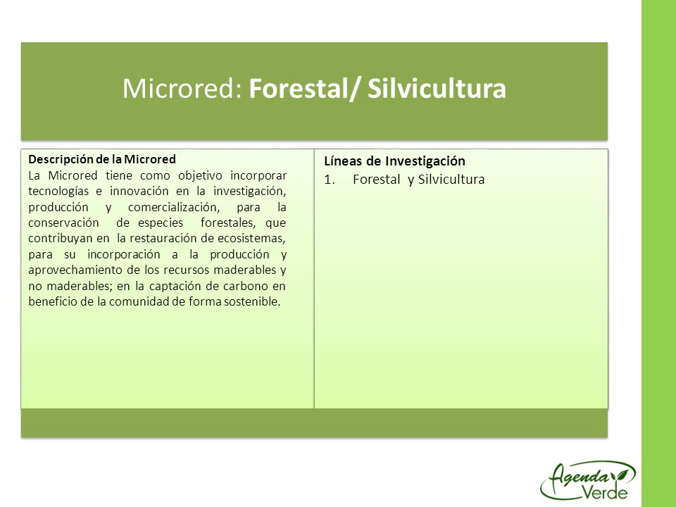 Microred: Forestal/ Silvicultura