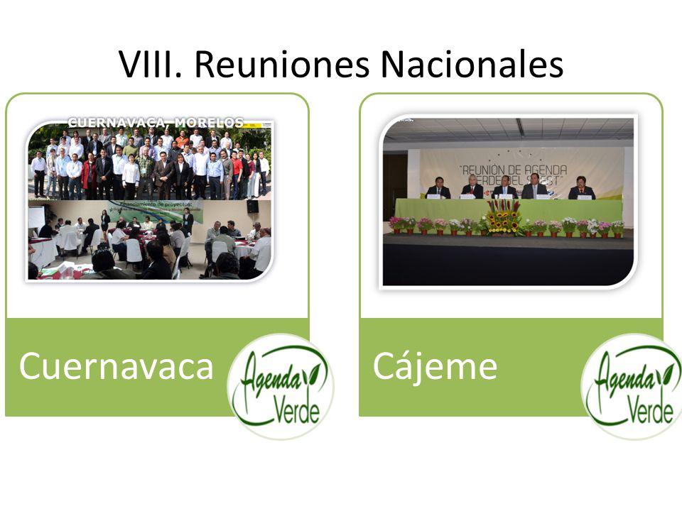 VIII. Reuniones Nacionales