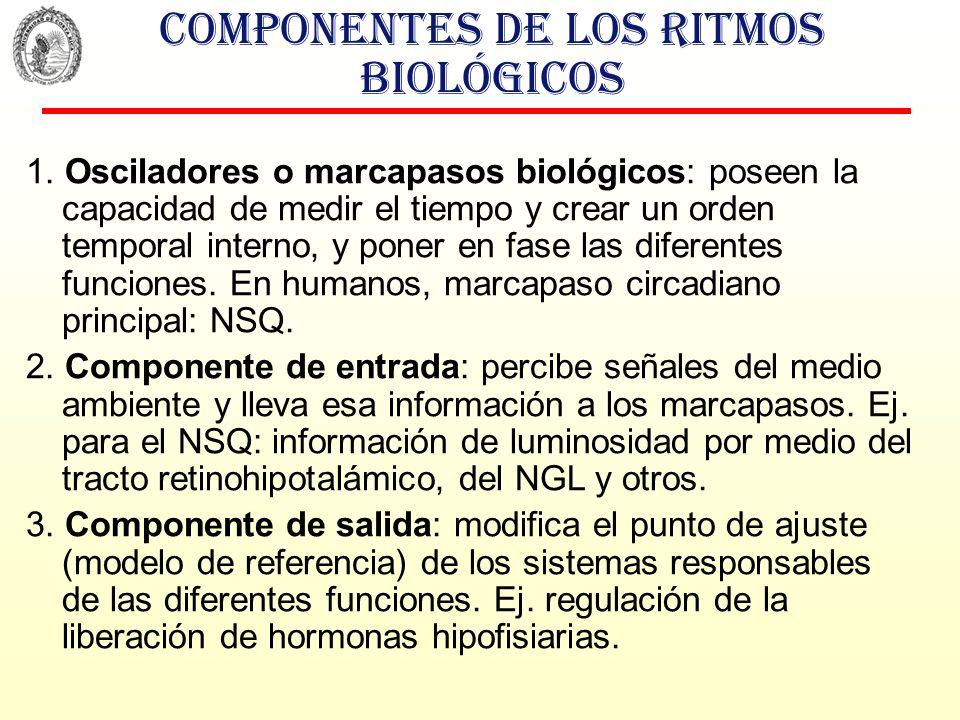 Componentes de los ritmos biológicos