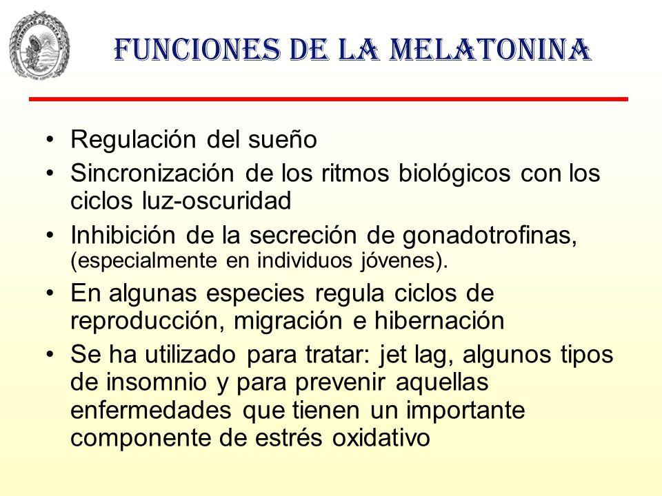 Funciones de la melatonina
