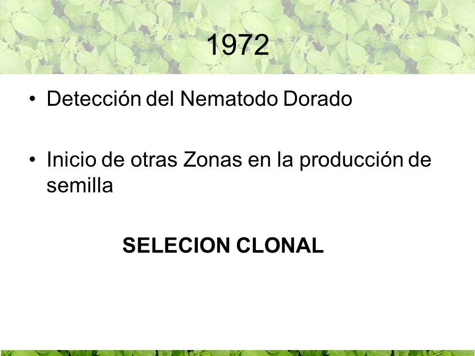 1972 Detección del Nematodo Dorado