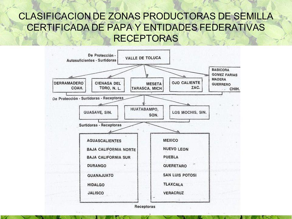 CLASIFICACION DE ZONAS PRODUCTORAS DE SEMILLA CERTIFICADA DE PAPA Y ENTIDADES FEDERATIVAS RECEPTORAS