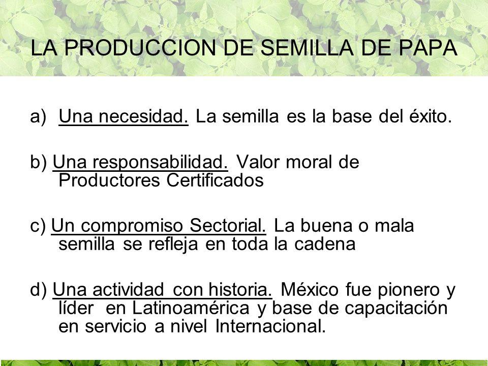 LA PRODUCCION DE SEMILLA DE PAPA
