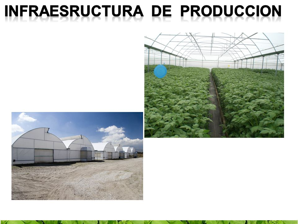 Infraesructura de produccion