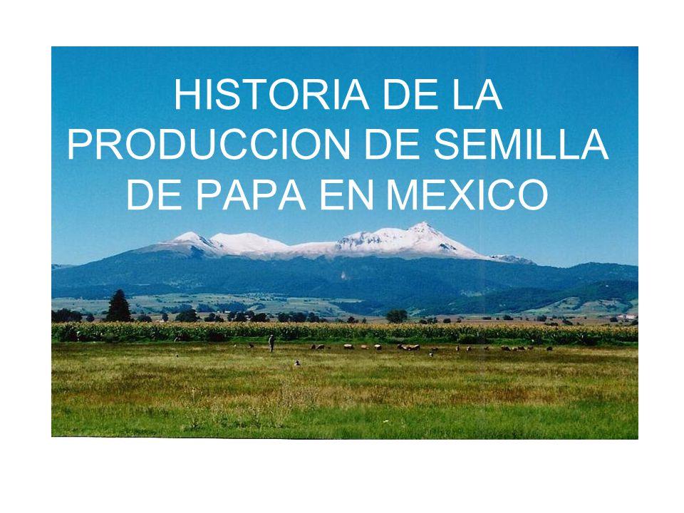 HISTORIA DE LA PRODUCCION DE SEMILLA DE PAPA EN MEXICO