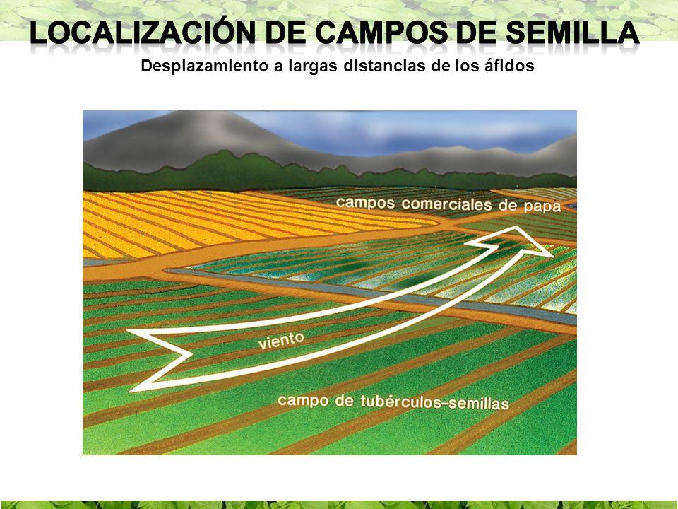 Localización de campos de semilla