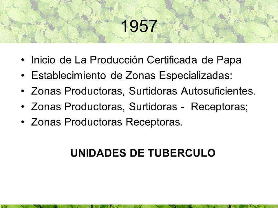 1957 Inicio de La Producción Certificada de Papa