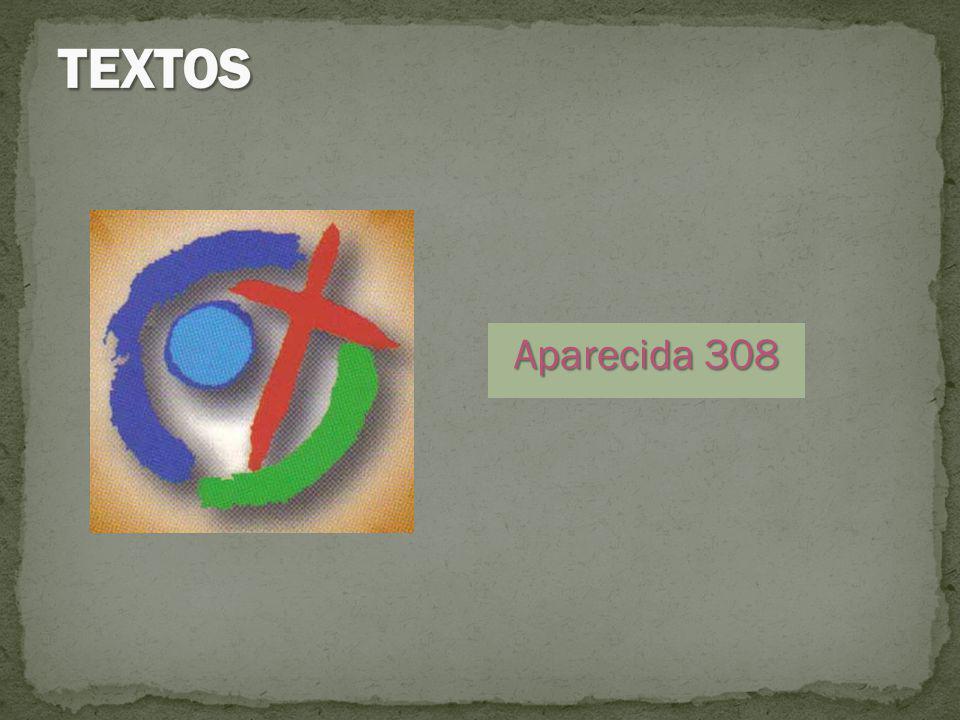 TEXTOS Aparecida 308
