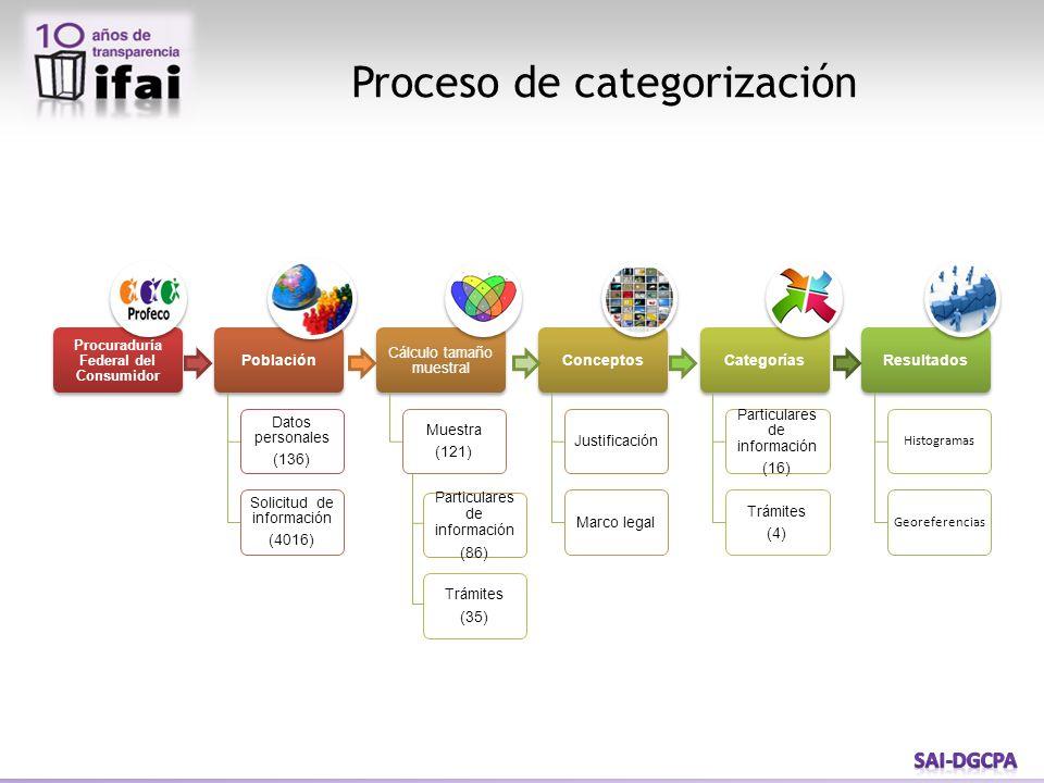 Proceso de categorización
