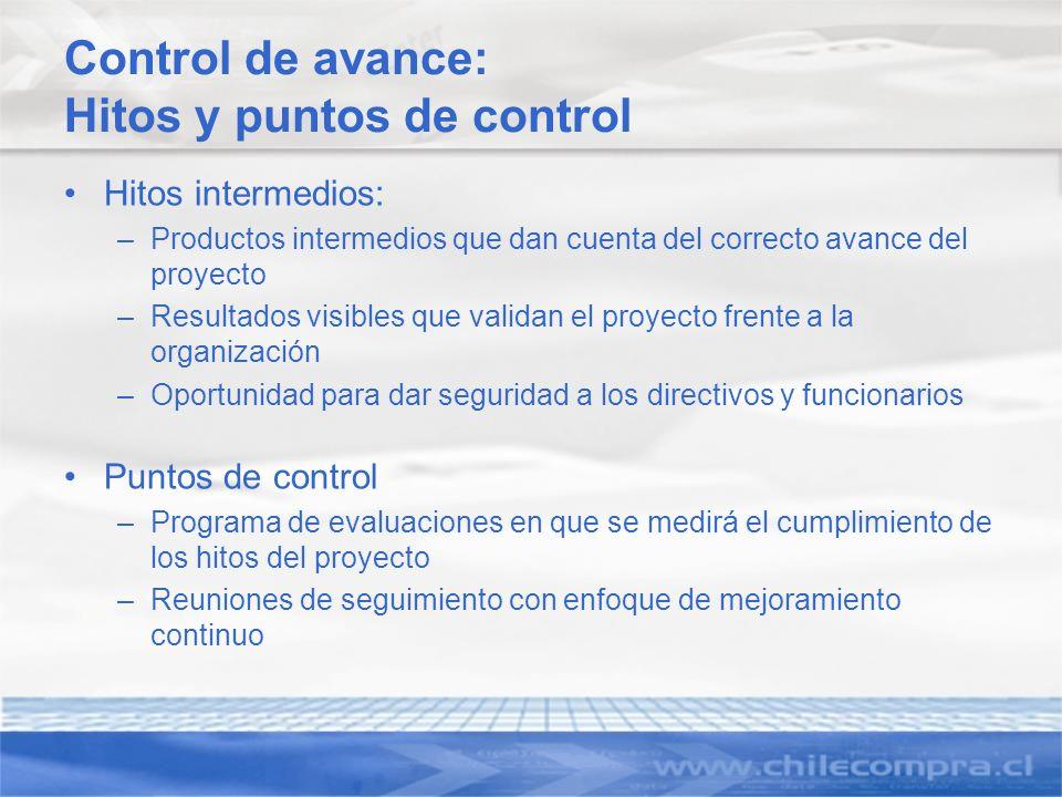 Control de avance: Hitos y puntos de control