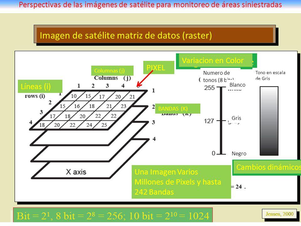 Imagen de satélite matriz de datos (raster)