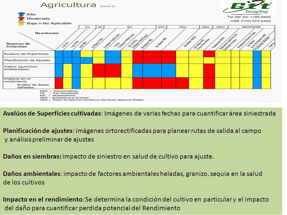 Avalúos de Superficies cultivadas: Imágenes de varias fechas para cuantificar área siniestrada