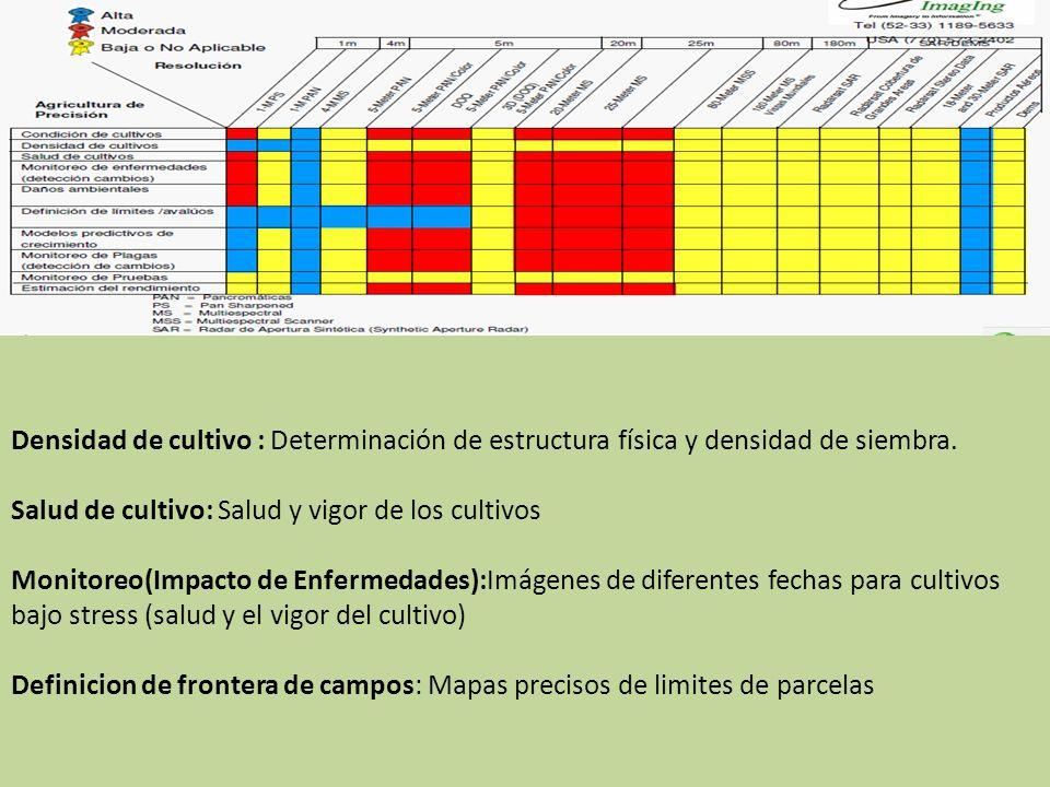 Perspectivas de las im genes de sat lite para monitoreo de for Densidad de siembra de tilapia
