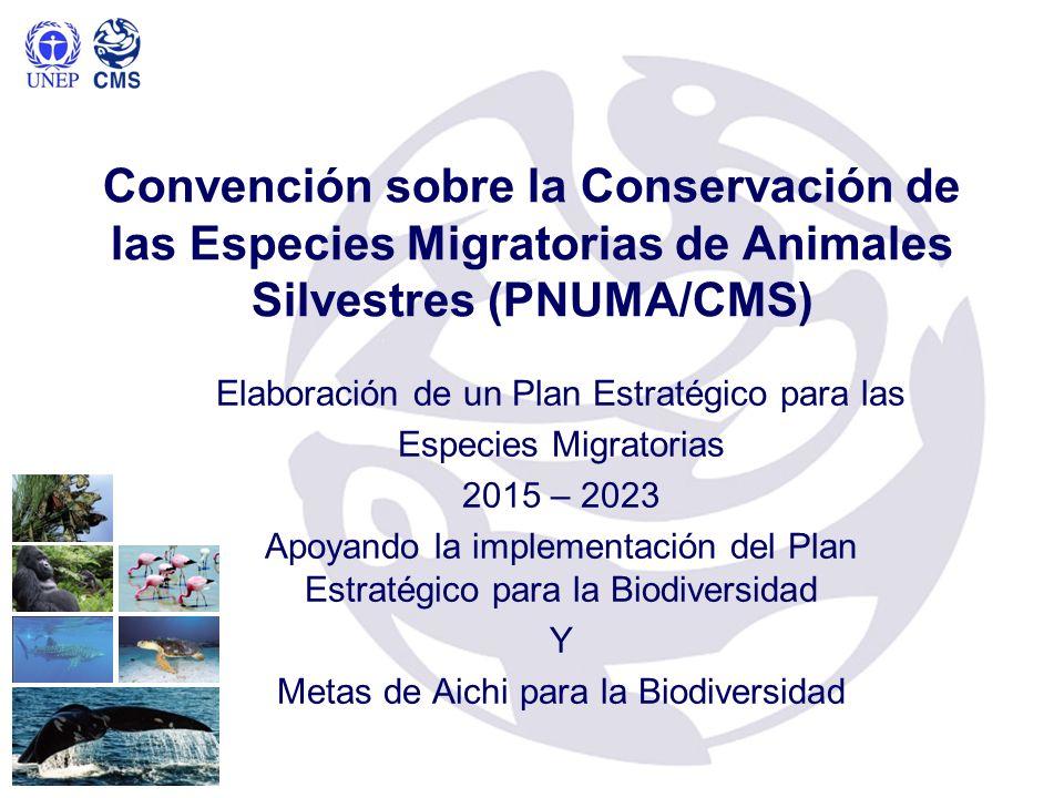 Convención sobre la Conservación de las Especies Migratorias de Animales Silvestres (PNUMA/CMS)