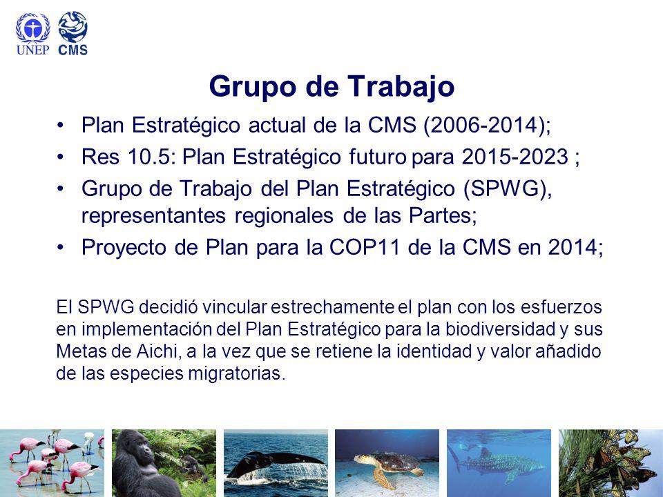 Grupo de Trabajo Plan Estratégico actual de la CMS (2006-2014);