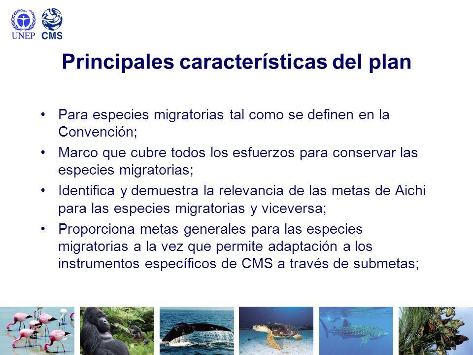 Principales características del plan