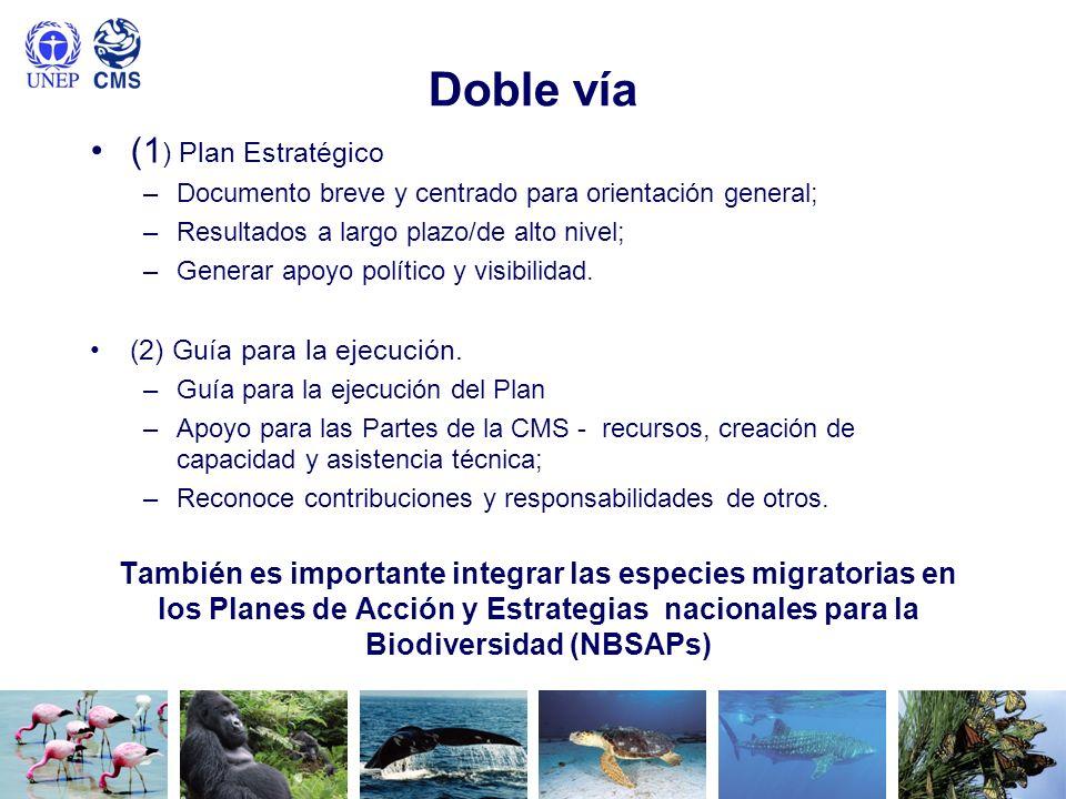 Doble vía (1) Plan Estratégico