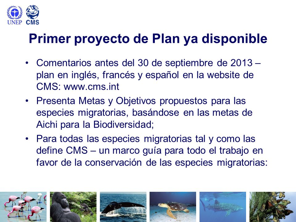 Primer proyecto de Plan ya disponible