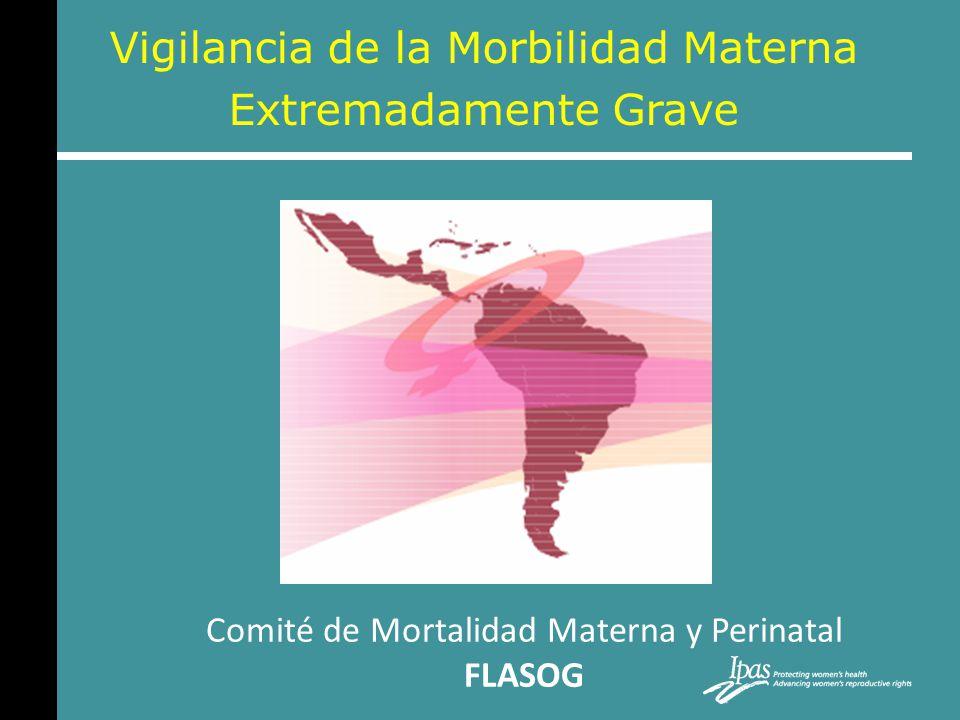 Vigilancia de la Morbilidad Materna Extremadamente Grave