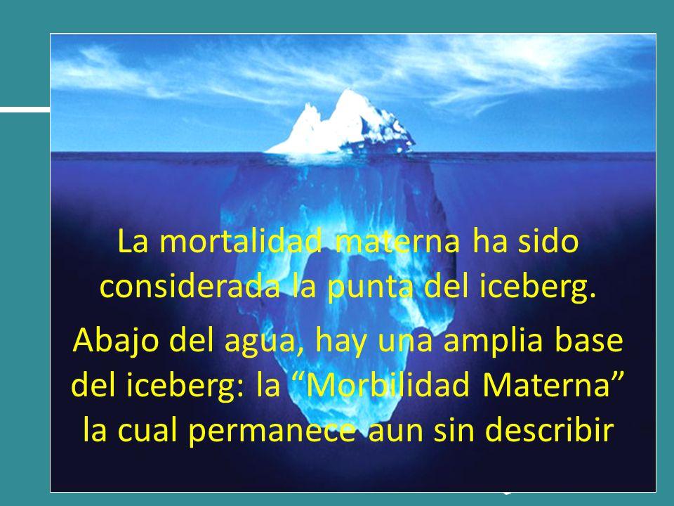 La mortalidad materna ha sido considerada la punta del iceberg.