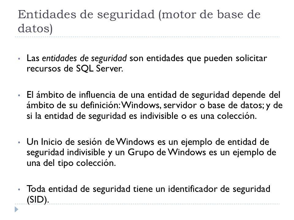 Entidades de seguridad (motor de base de datos)