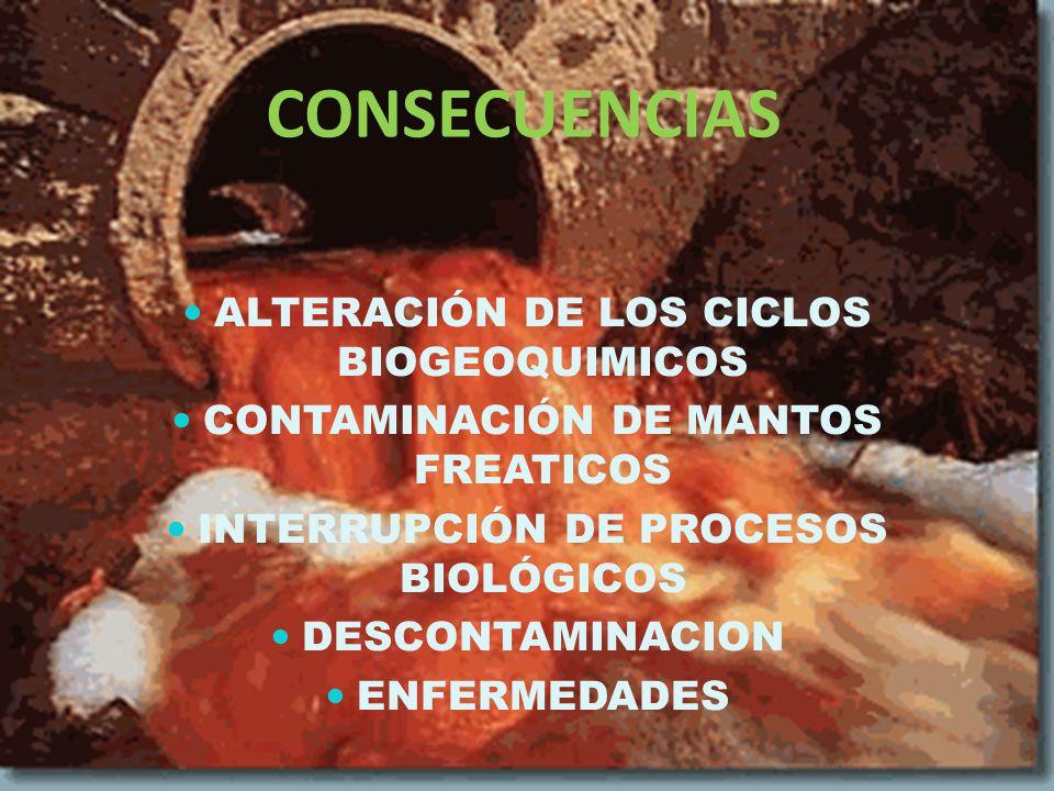 CONSECUENCIAS ALTERACIÓN DE LOS CICLOS BIOGEOQUIMICOS