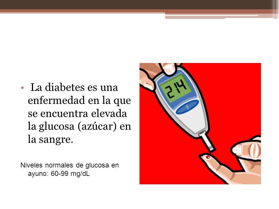 La diabetes es una enfermedad en la que se encuentra elevada la glucosa (azúcar) en la sangre.