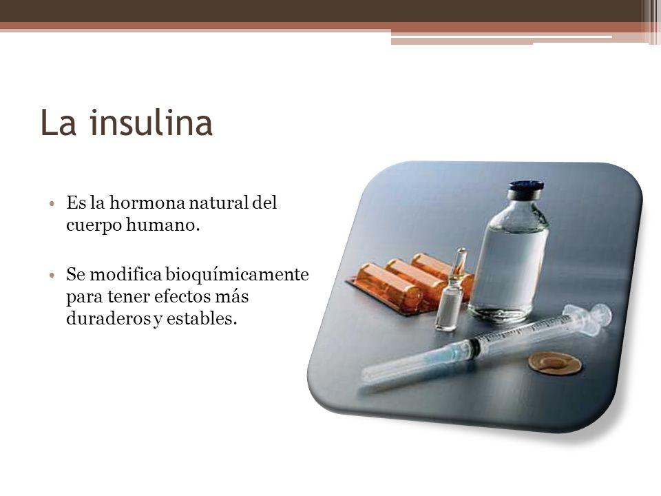 La insulina Es la hormona natural del cuerpo humano.