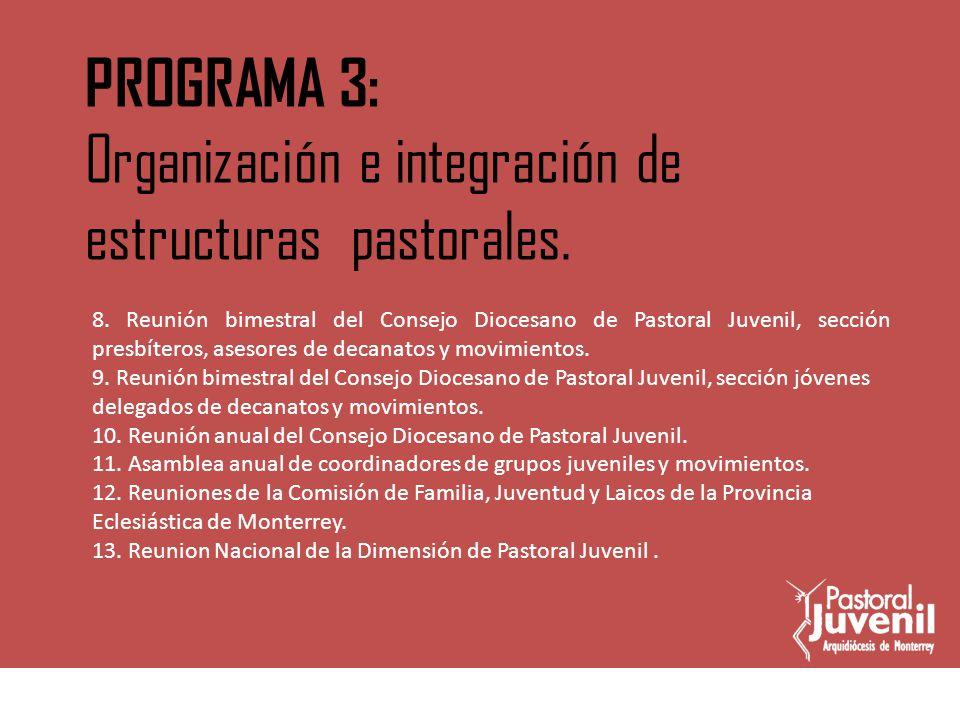 Organización e integración de estructuras pastorales.