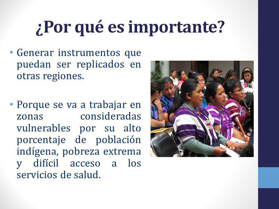 ¿Por qué es importante Generar instrumentos que puedan ser replicados en otras regiones.