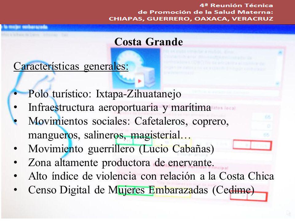 Costa Grande Características generales: Polo turístico: Ixtapa-Zihuatanejo. Infraestructura aeroportuaria y marítima.
